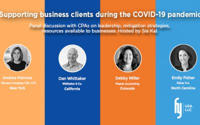 What successful accounting firms are doing to handle the COVID-19 crisis (CHECKLIST)